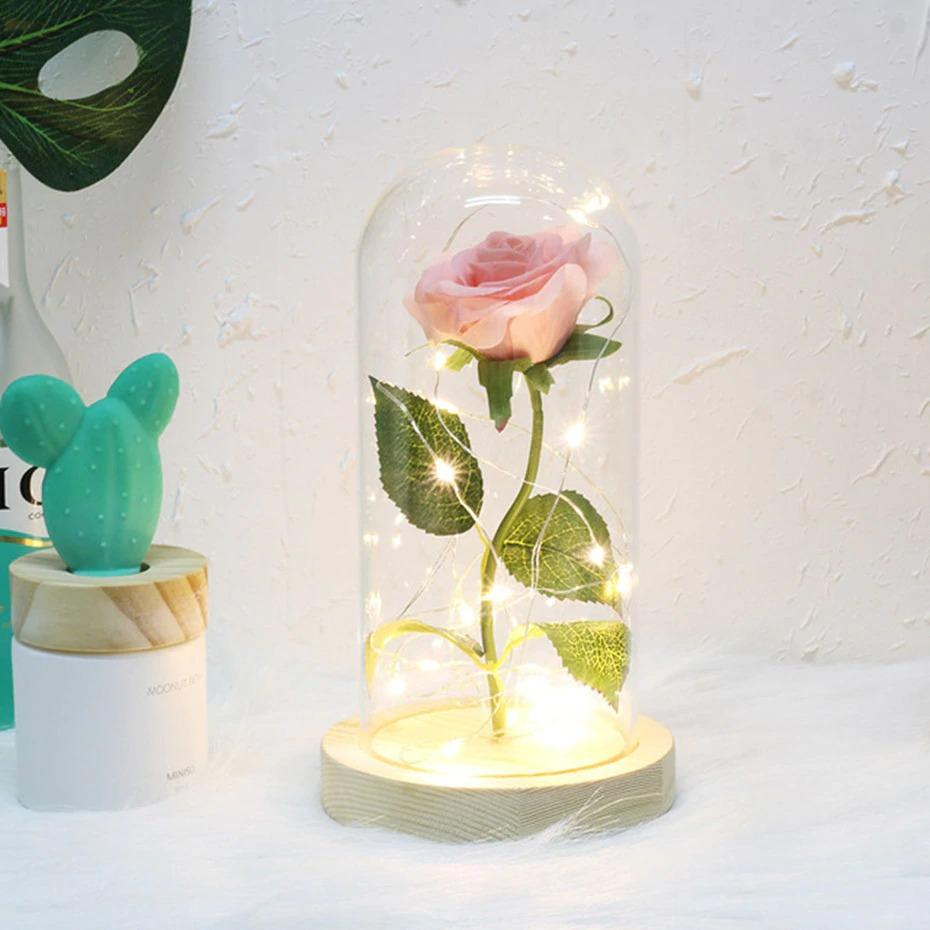 Rose sous cloche rose