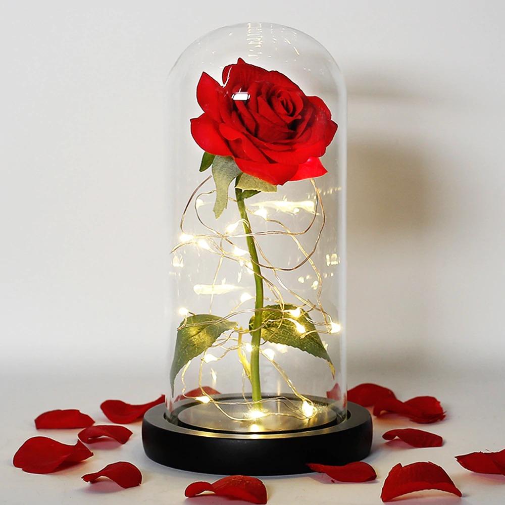 Rose sous cloche rouge