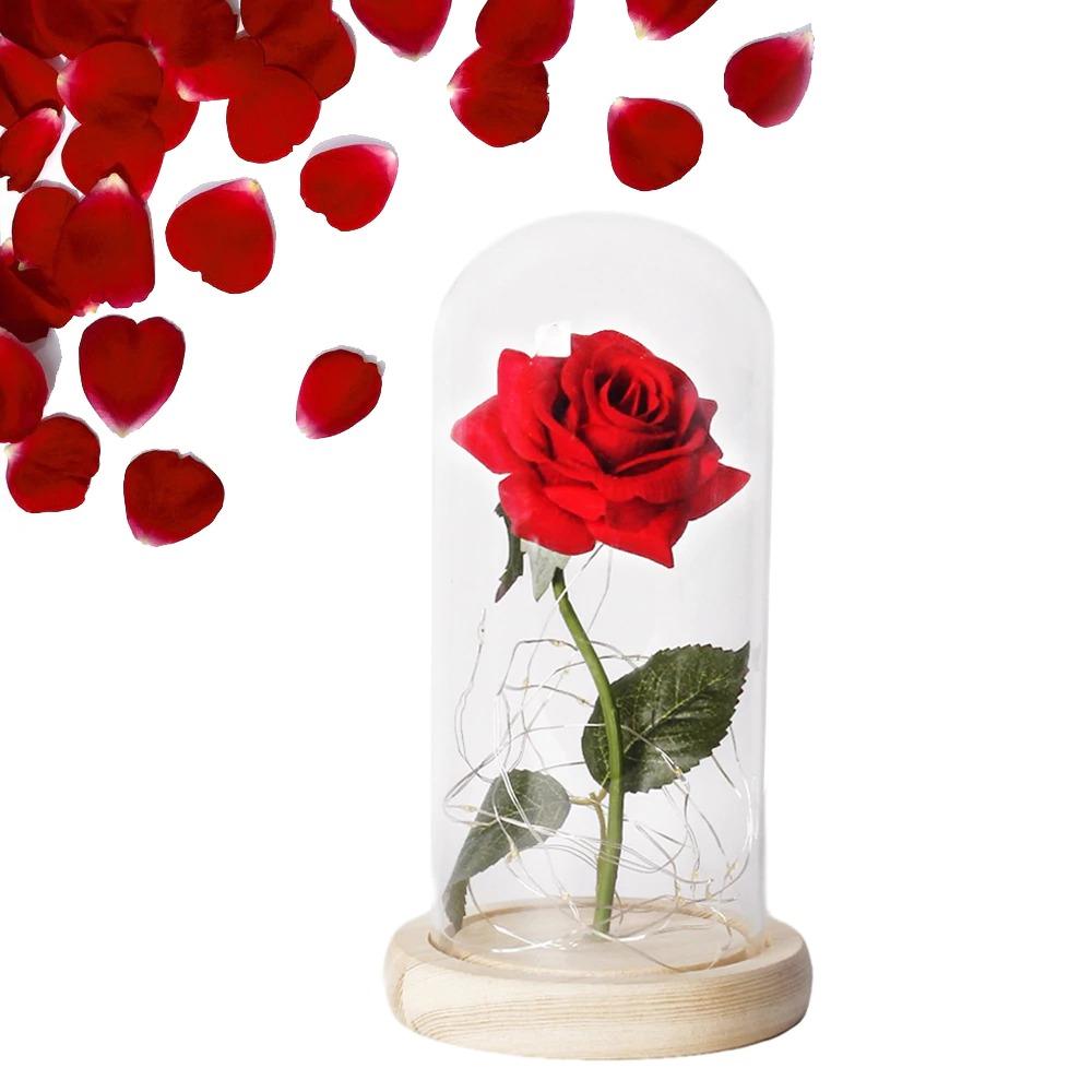 Rose sous cloche saint-valentin