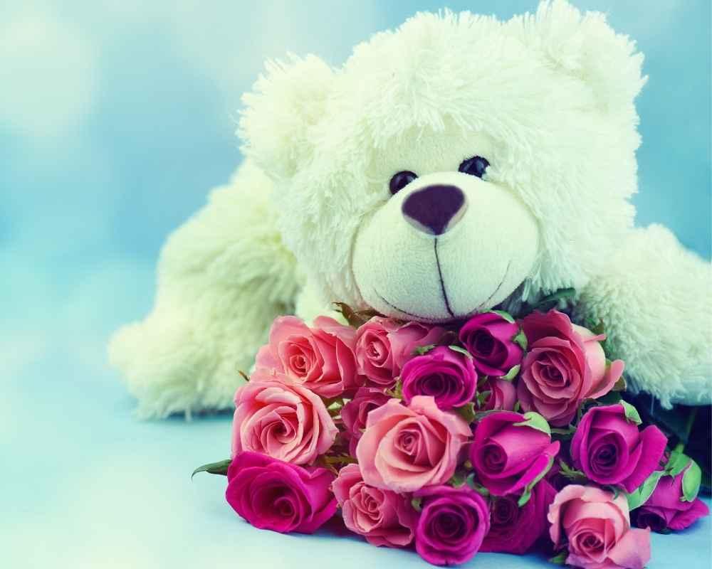 ours-en-rose-saint-valentin